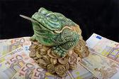 štěstí žába — Stock fotografie