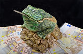 Luck frog — Stock Photo
