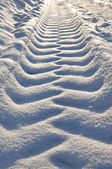 Tracks in the snow. — Stock Photo