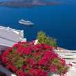 Beautiful bougainvillea on a terrace overlooking Santorini caldera - Stock Photo