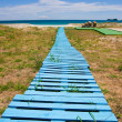 Stock Photo: Improvised boardwalk
