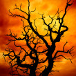 Stock Photo: Surreal dead tree
