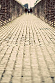 Cobblestoned alley — Stock Photo