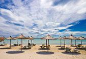 An empty beach with sunshades — Stock Photo
