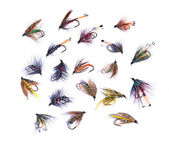 Assorted fishing flies — Stock fotografie