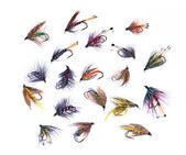 Nejrůznějších rybářských mouchy — Stock fotografie