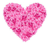 Romantic pink heart — Stock Photo