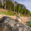 Cairn on the beach by the sea — Stock Photo #5494379