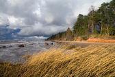 Baltic Sea coast before the rain — Stock Photo