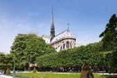パリのノートルダム大聖堂 — ストック写真