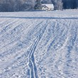 Traces of the ski to the house of a winter day - Stock Photo