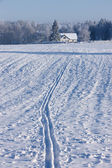 Traces of the ski to the house of a winter day — Stock Photo