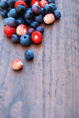 Blueberries and wild strawberries — Stock Photo