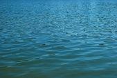 Fond de l'eau — Photo