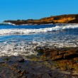 Point Lobos — Stock Photo #5462484