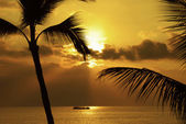 Sunset Party Cruise — Stock Photo