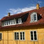 Danish house — Stock Photo #5564042