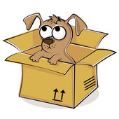 Tatlı bir köpecik kutusunda — Stok Vektör