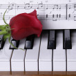 Stock Photo: Piano with red rose