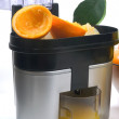 Juicer — Stock Photo