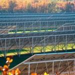 Photovoltaic power plant — Stock Photo #5656444
