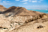 Desert and dead sea in Israel — Stock Photo