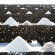 Salt piles in the salines from Janubio, an old historic salt production in — Stock Photo #5519947