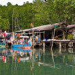 Huts at the mangrove everglades in a small fishermans village — Stock Photo