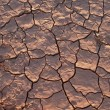 Detail of dry loam earth — Stock Photo