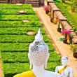 Beautiful statue of Buddhas in temple Wat Chai Mongkol — Stock Photo