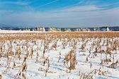 Kışın kar, acre ve konut alanı ile güzel manzara — Stok fotoğraf