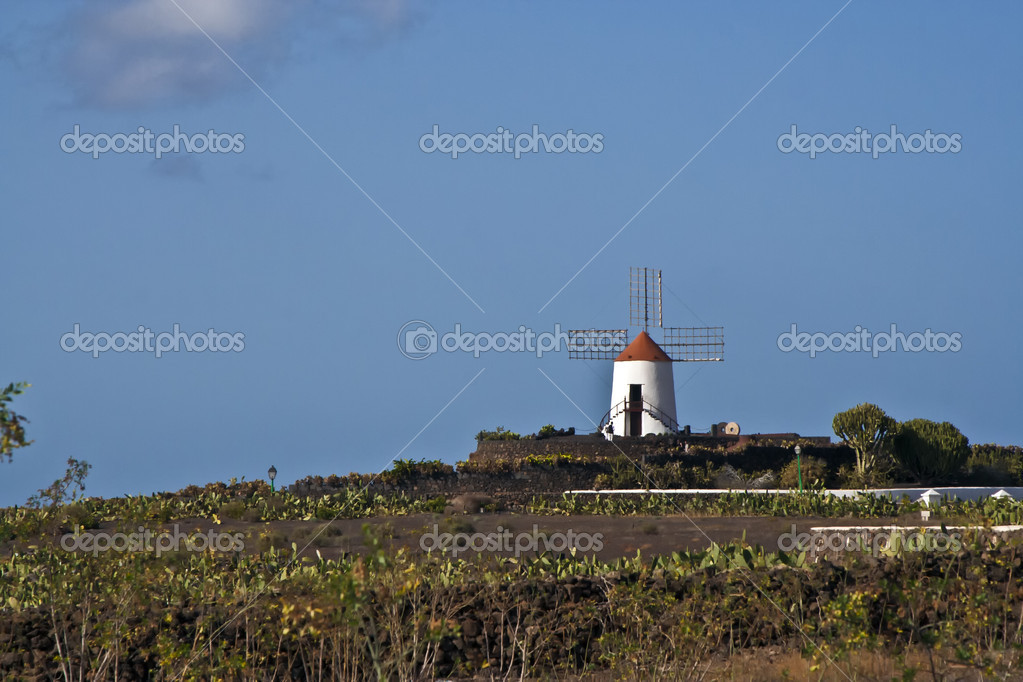 Windmill in Lanzarote in jardin du cactus — Stock Photo #5526561