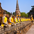 Buddha statues at the temple of Wat Yai Chai Mongkol in Ayutthay - Stock fotografie