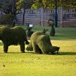 Stock Photo: Bushes cut to animal figures in the park of Bang Pa-In Palace