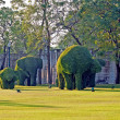 Bushes cut to animal figures in the park of Bang Pa-In Palace — Stock Photo #5530611