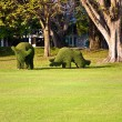 Bushes cut to animal figures in the park of Bang Pa-In Palace — Stock Photo #5530614