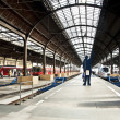 Classicistic iron train station from inside — Foto Stock
