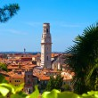 Panorama of Verona with view of the old dome - Stock Photo