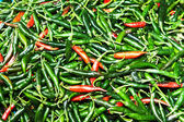 禁止のハーブ市場で異なる色で新鮮な唐辛子 — ストック写真