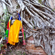 Buddhcovered by roots in temple areWat PhrSi Sanphet — Stock Photo #5543495