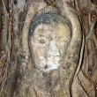 Buddhas head in Mahathat temple in Ajutthaya is covered by roots — Stock Photo
