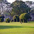 Bushes cut to animal figures in the park of Bang Pa-In — Stock Photo #5543592