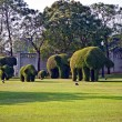 Bushes cut to animal figures in the park of Bang Pa-In — Stock Photo