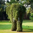 Stock Photo: Bushes cut to animal figures in the park of Bang Pa-In