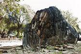 Famoso tempio zona wat phra si sanphet — Foto Stock