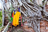 Buddha covered by roots in temple area Wat Phra Si Sanphet — Stock Photo