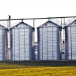 Silver silos in the field - Stock fotografie
