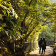 Couple walks the romantic peak way in Hong Kong, Victoria — Foto Stock