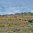 Camp with heli landing port at Mount Kilimanjaro trail in Afric — Stock Photo