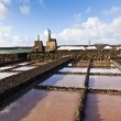 Salt refinery, Saline from Janubio, Lanzarote - Stock Photo
